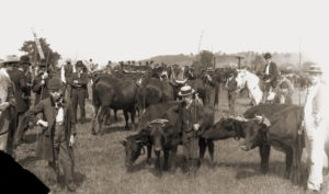 New Milford Fair c 1895