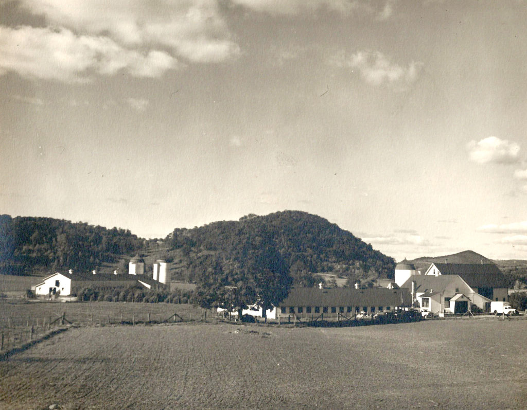 Sunny Valley Farm 1950s
